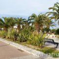 pista-ciclabile-tra-San-Benedetto-e-Porto-DAscoli